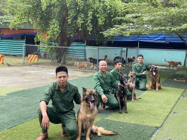 Trung Đức nhận huấn luyện chó cảnh, chó nghiệp vụ uy tín